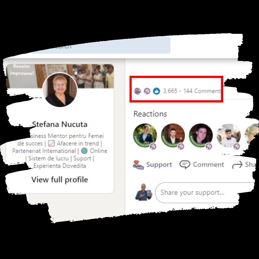 Rezultate in LinkedIn